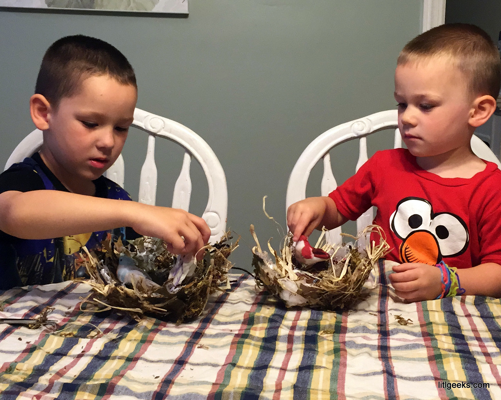 litlcrafts Bird Nests